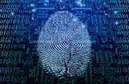 biometric smartphone