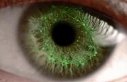 eyelock